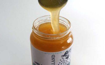 La cristallisation du miel