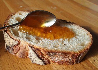une tartine au miel de montagne ?